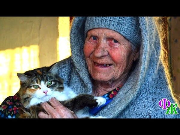 Кто то рассыпал по всему двору отраву и бабушка плача собирала скрюченные тельца своих питомцев