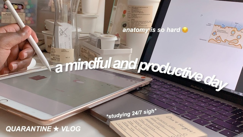A mindful and productive day in my life ✰ quarantine vlog