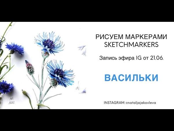 Рисуем ВАСИЛЬКИ маркерами SKETCHMARKERS Эфир от 21 06