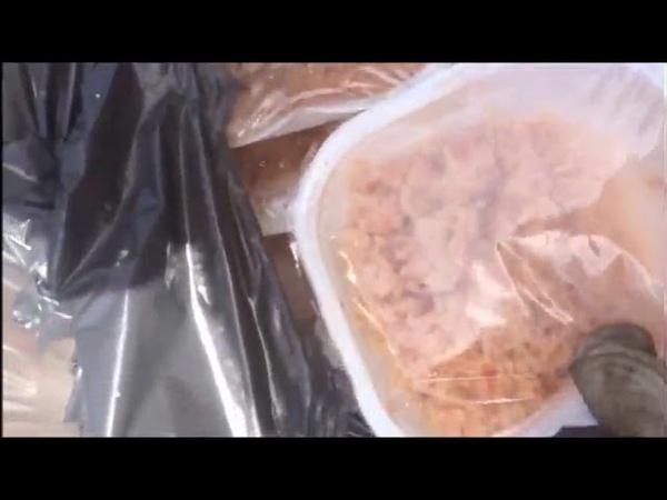 Giorgia Meloni A Roma il cibo destinato agli immigrati gettato nell'immondizia VERGOGNA
