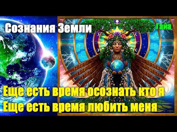 Сознание Земли - Я постараюсь защитить как можно больше людейЭра Возрождения