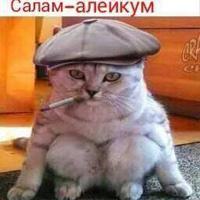 Алимов Ренат