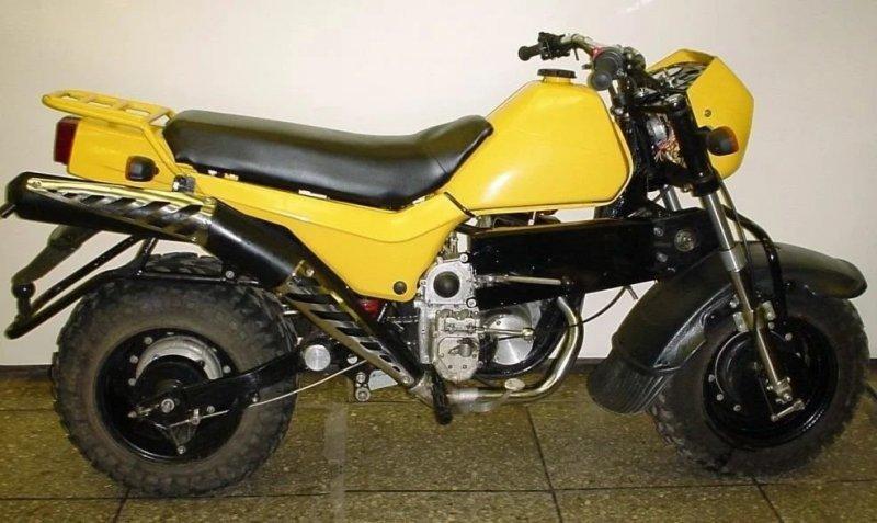 """ЗИД """"Тарзан"""" — мотоцикл с двумя ведущими колёсами, созданный для покорения Эльбруса, изображение №1"""