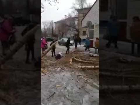 Шок Ураган в Москве дерево упало на человека