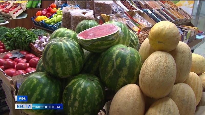 """Опасные ягоды как определить нитратные арбузы в Уфе разбирался корреспондент Вестей"""""""